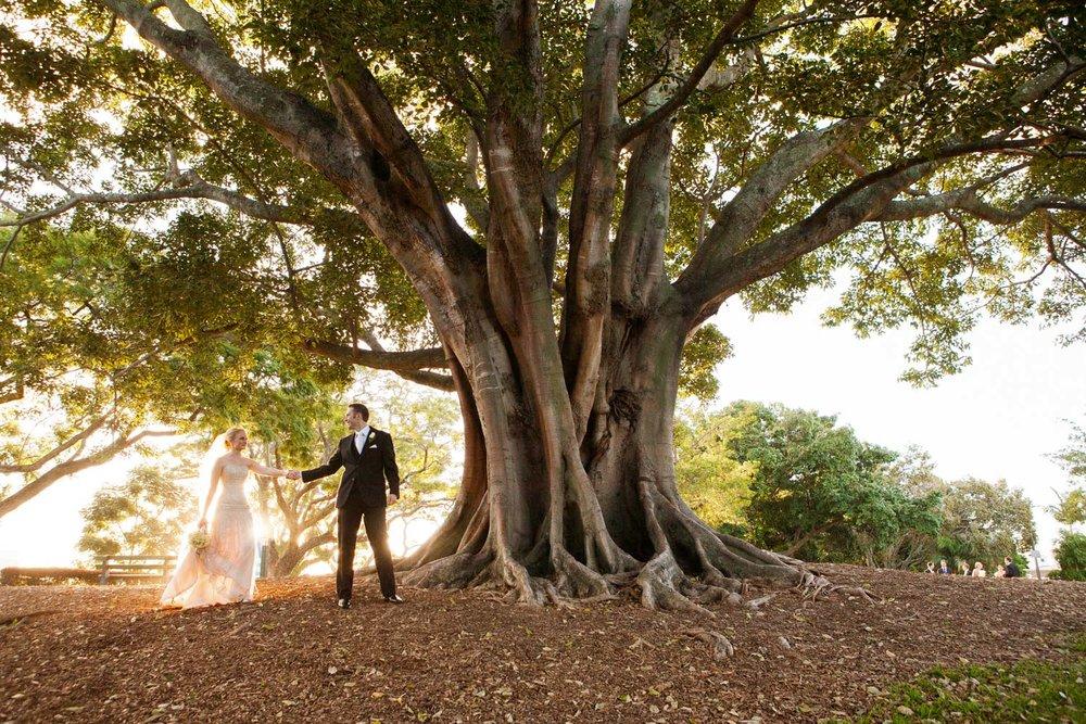 wedding-0498-newfarm-park-big-tree-australia.jpg