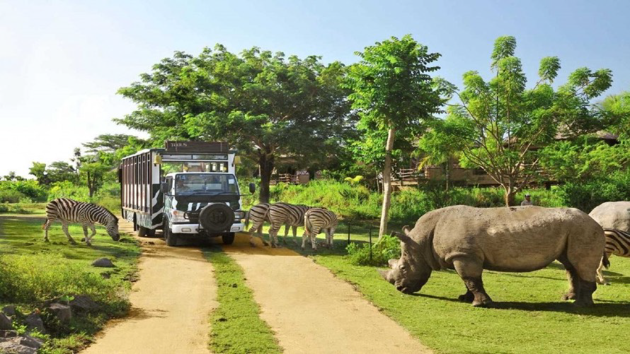 Bali Safari & Marine Park is Bali's largest animal theme park. The park is home to over 60 species, all roaming freely within their enclosures built to closely mimic their natural habitats.