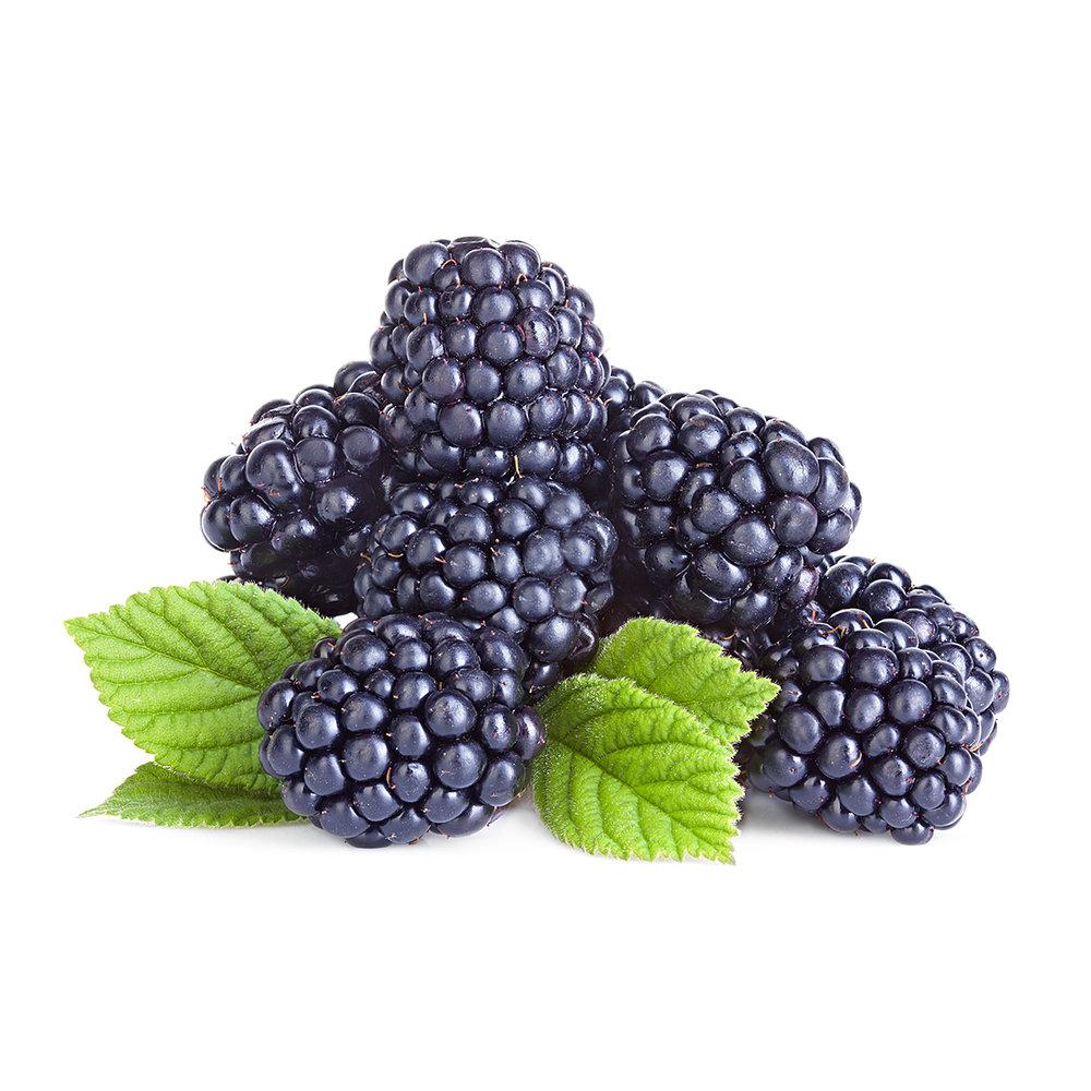 blackberries.506362413.1200x1200.jpg