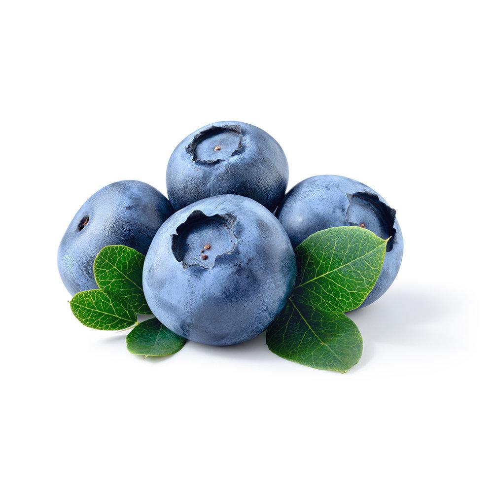 blueberries.688725106.1200x1200.jpg