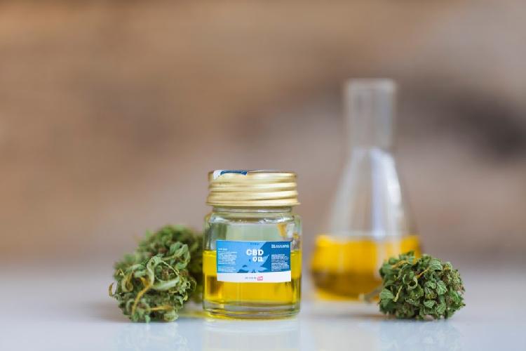 Why Terpenes Matter When Picking a Strain: buds around cbd oil