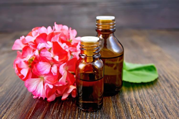 Geraniol geraniums and vials