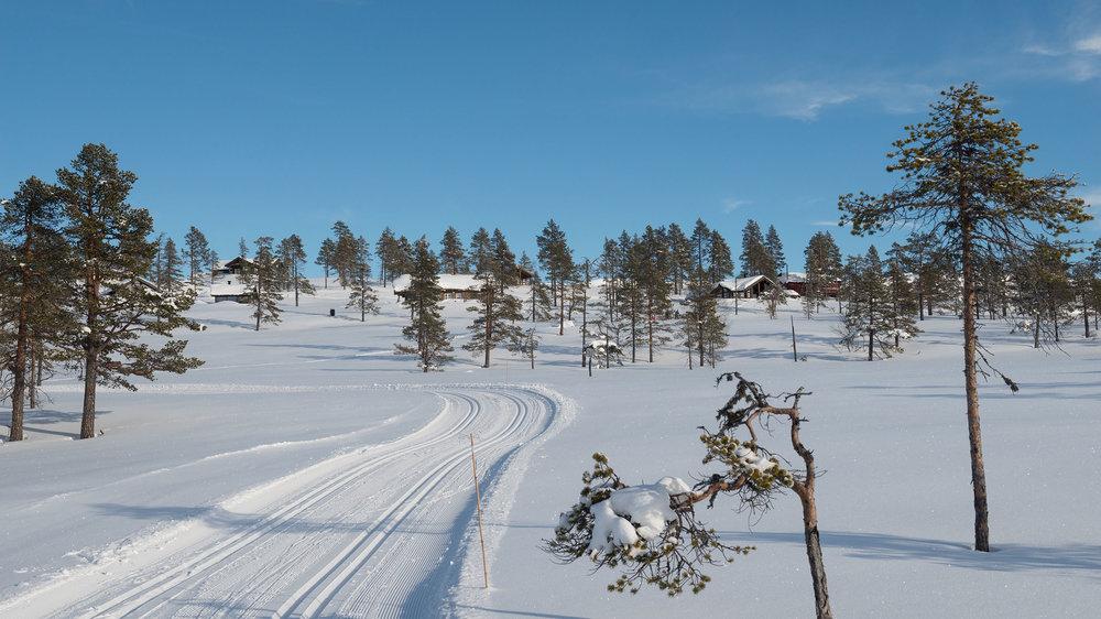 Skiløype_Sørbølfjell_SVA4315.jpg