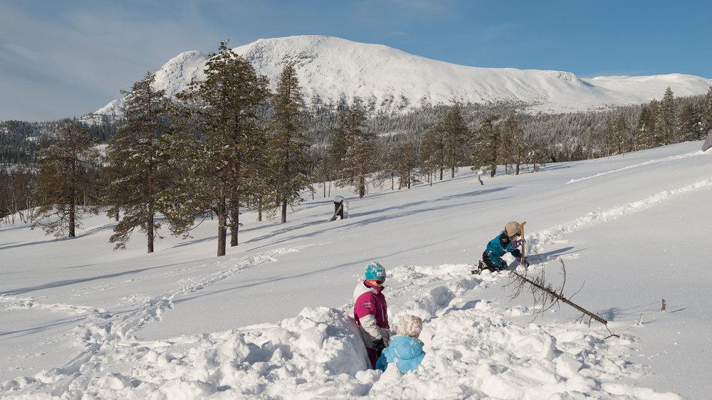Ungar-leikar-i-snøen_Sørbølnatten_SVA4331.jpg