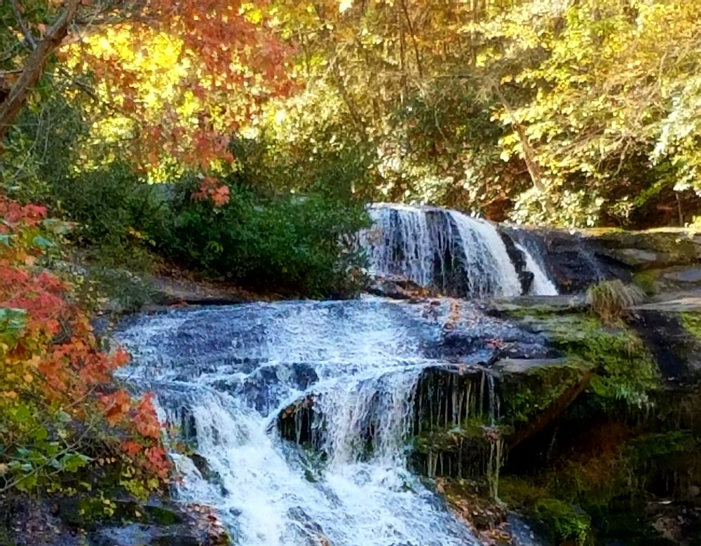 Tellico Plains, Starr Mountain, Vonore, Reliance and Coker Creek -
