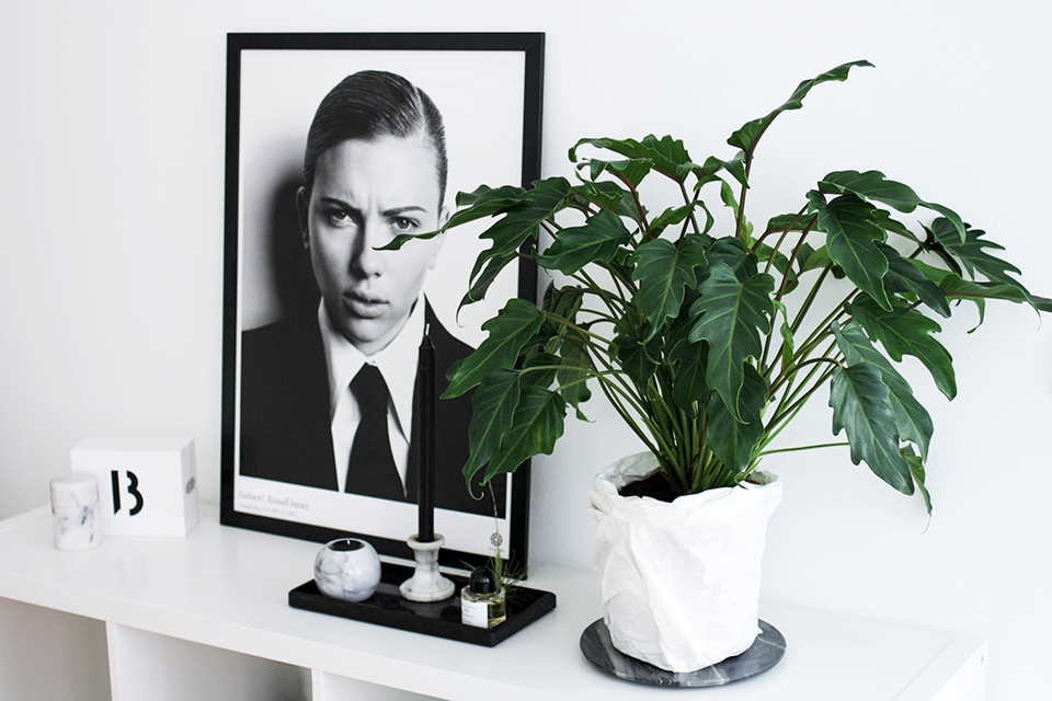 noa-noir-art-home-minimal-interior-design-inspiration-monochrome-styling-1.png