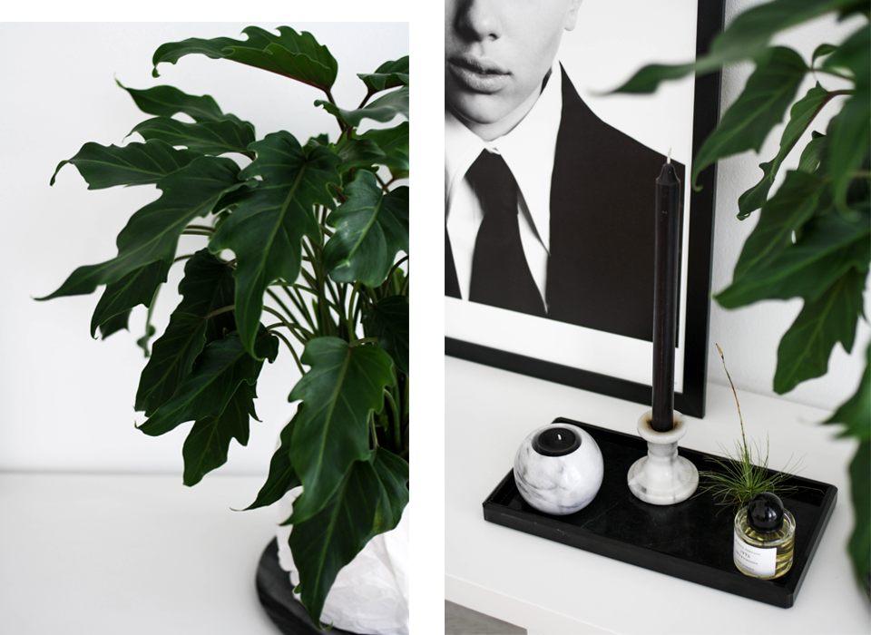 noa-noir-art-home-minimal-interior-design-inspiration-monochrome-styling-4.png