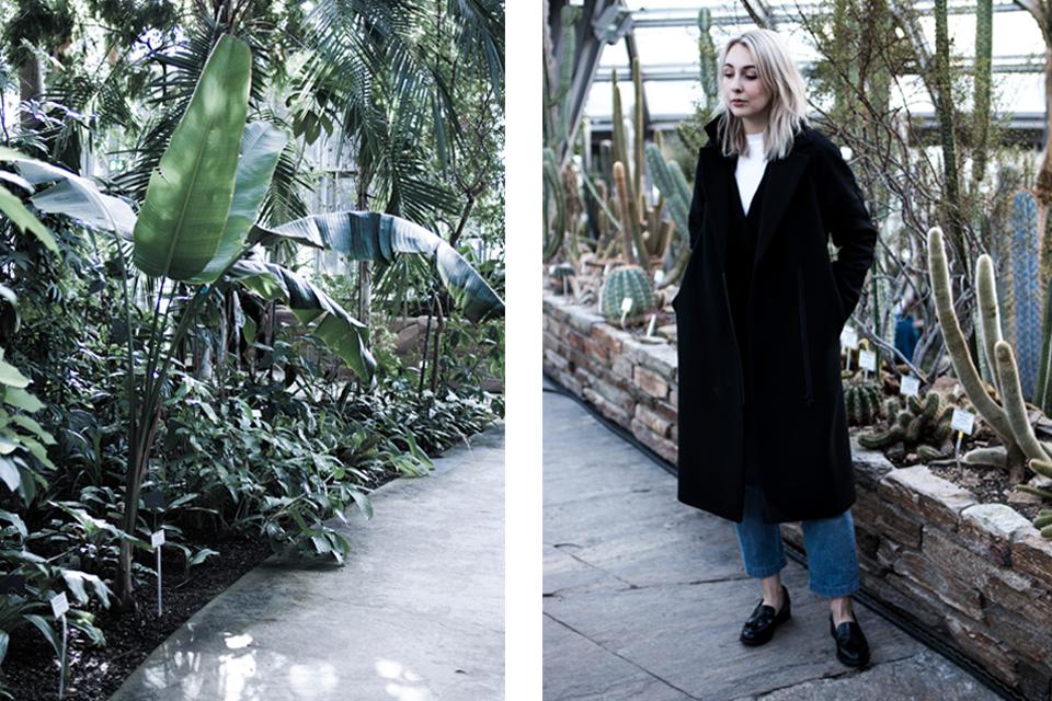 noa-noir-art-berlin-botanic-garden-cactus-tropical-green-botanischer-garten-2-2.png