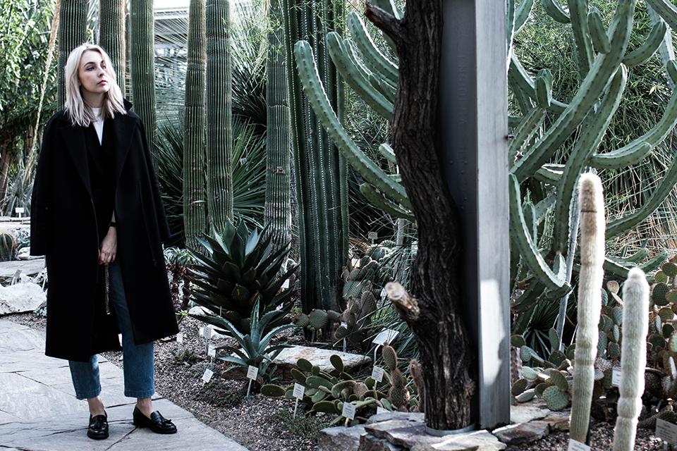 noa-noir-art-berlin-botanic-garden-cactus-tropical-green-botanischer-garten-5-1.png