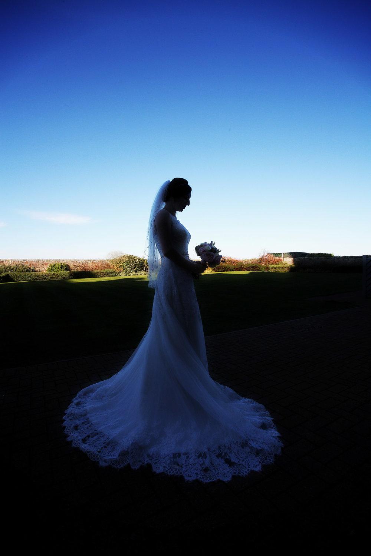 Bridal_Portrait_silhouette.jpg