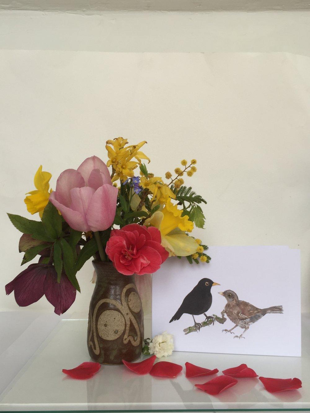 Pair of blackbirds - detail