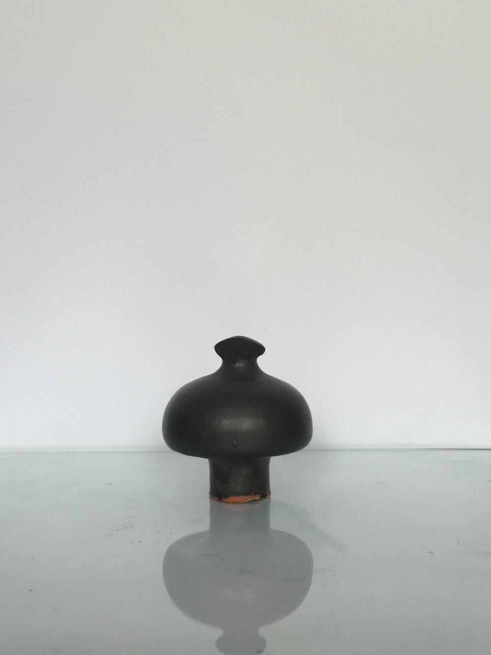 Organic shaped lid
