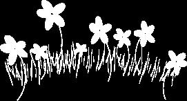 kukka2.png