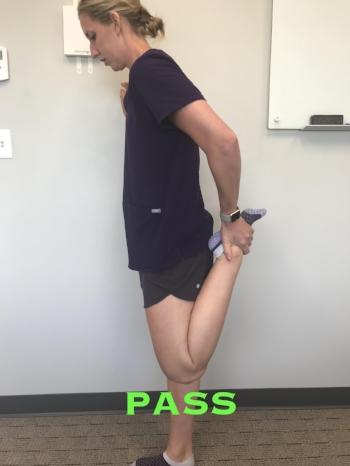 FSS-Knee7.jpg