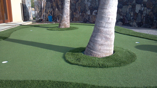 putting-green-2palms.jpg