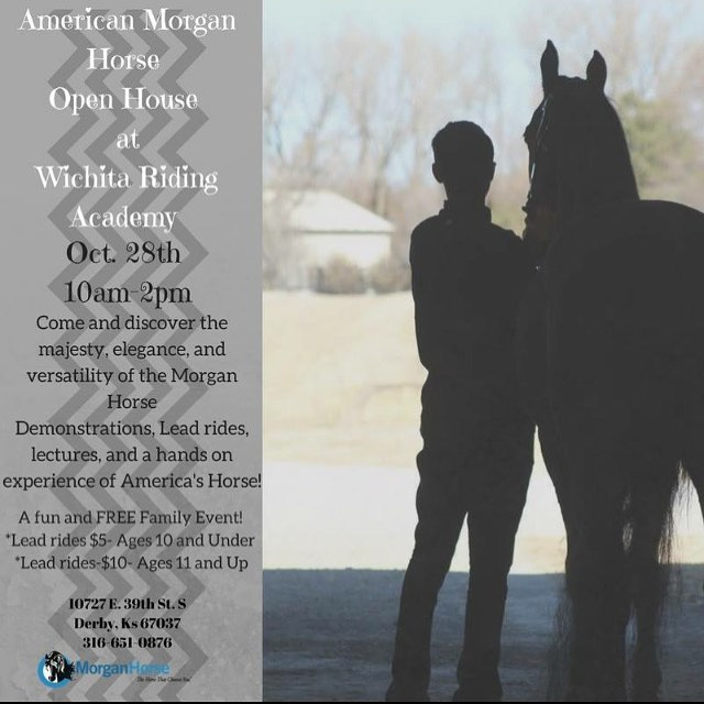 Come out to our open house this Saturday and support the Morgan horse!!! We we would love to see all of you!