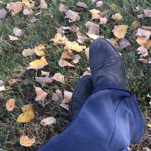 Fall at the barn!!
