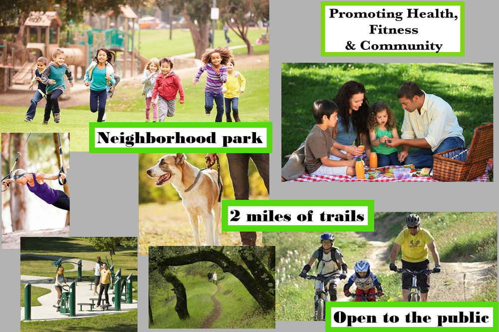 Open Space & Trail System_edited copy.png