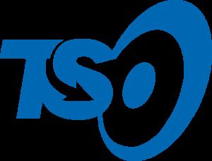TSLogo_Symbol-Color-300x228.png