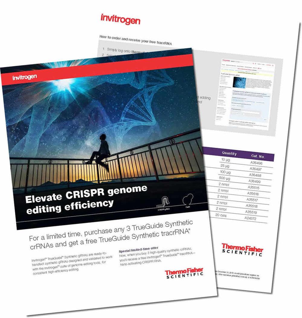 CRISPR-Flyer.jpg