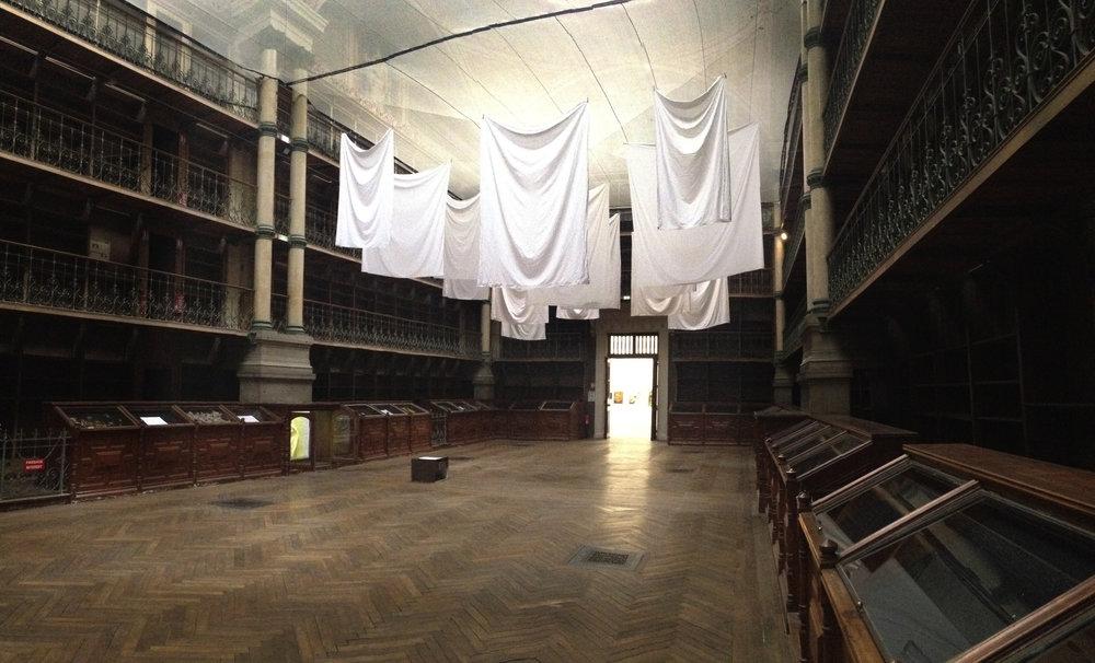 musee-interior.jpg