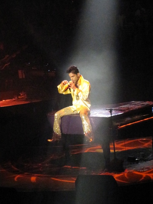 Prince20114119.JPG