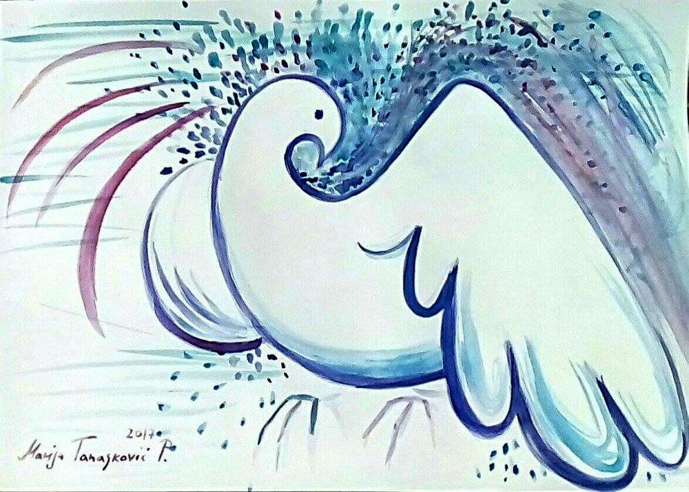 white pigeon.jpg