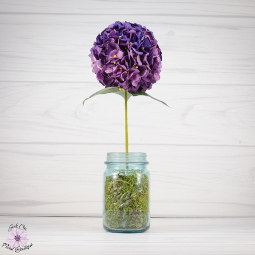Purple-Hydrangea_WM.jpg