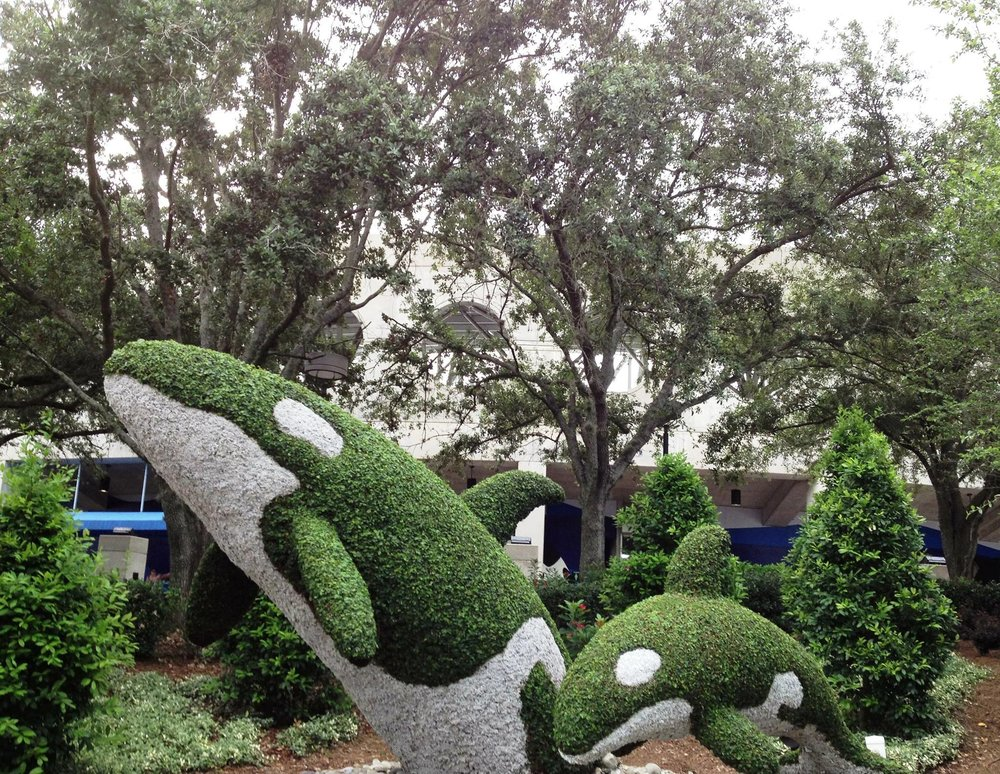 Topiary_Orcas.jpg