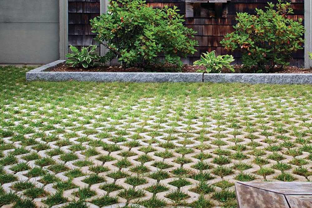using plants between concrete pavers