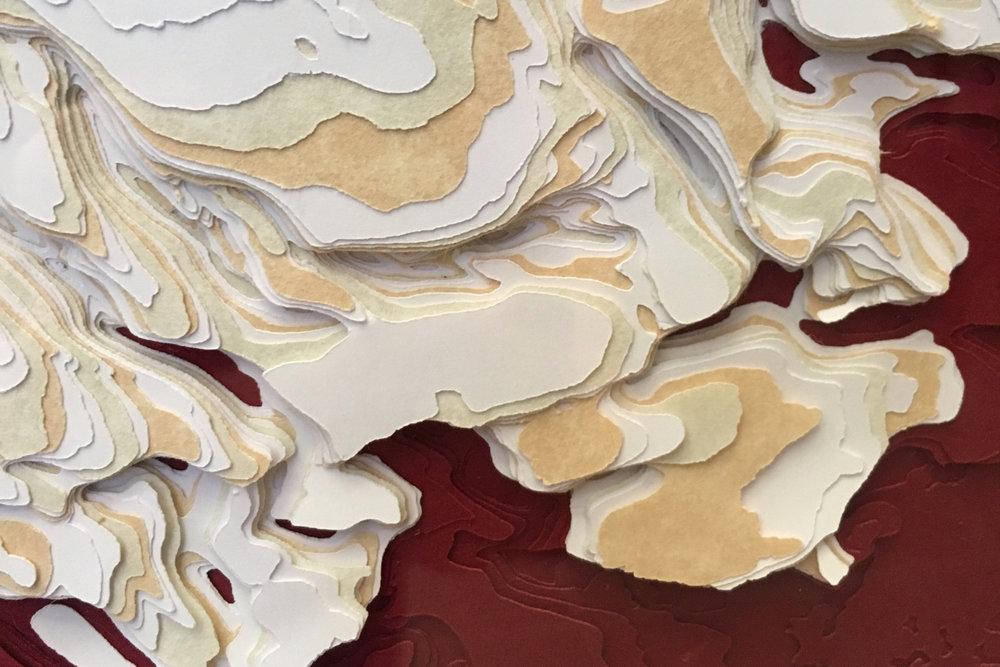 Chasma Boreale (detail) © Jamie Molaro