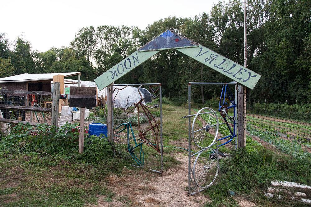 Moon_Valley_Farm_Emma_Jogoz_fence_2483-2.jpg