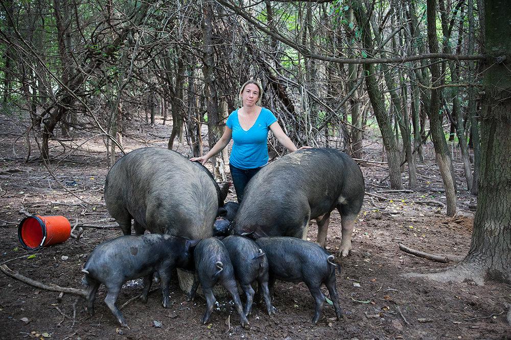 Pig_farmer_Kelly_Hensing_470.jpg