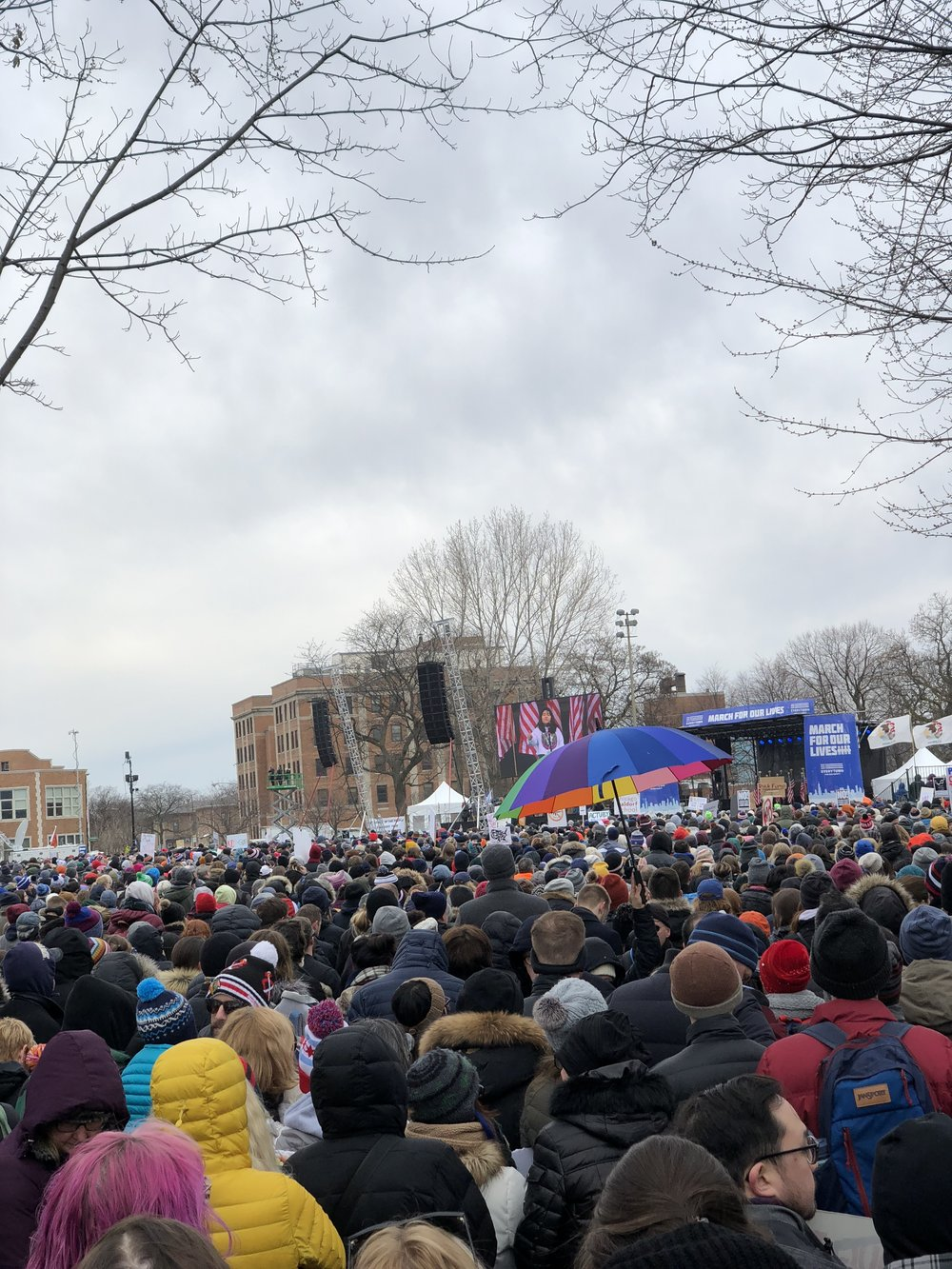 almonds and asana march for our lives chicago.JPG