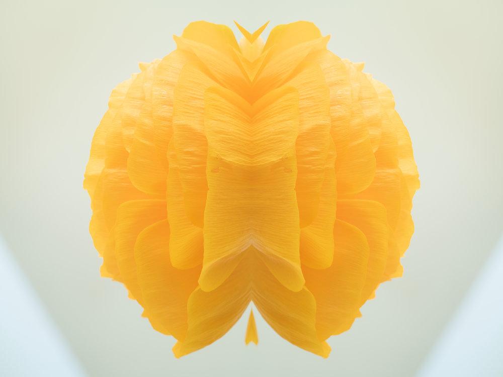 Efflorescence 12