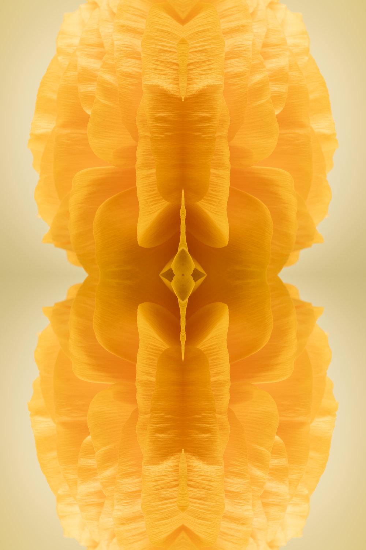 Efflorescence 10
