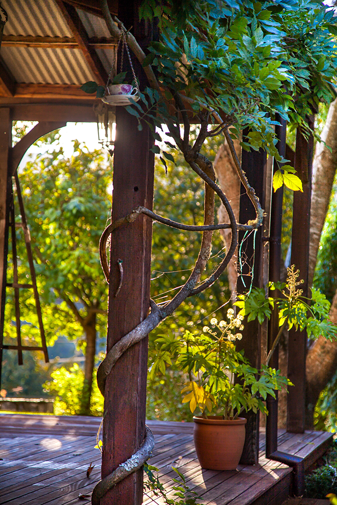 AutumnMotuekaRiverLodge_Vine_on_deck.jpg