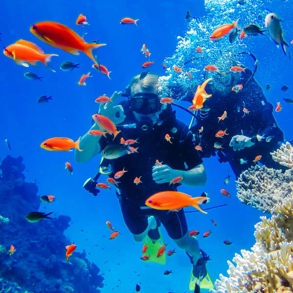 sharm-el-sheikh-diving.jpg