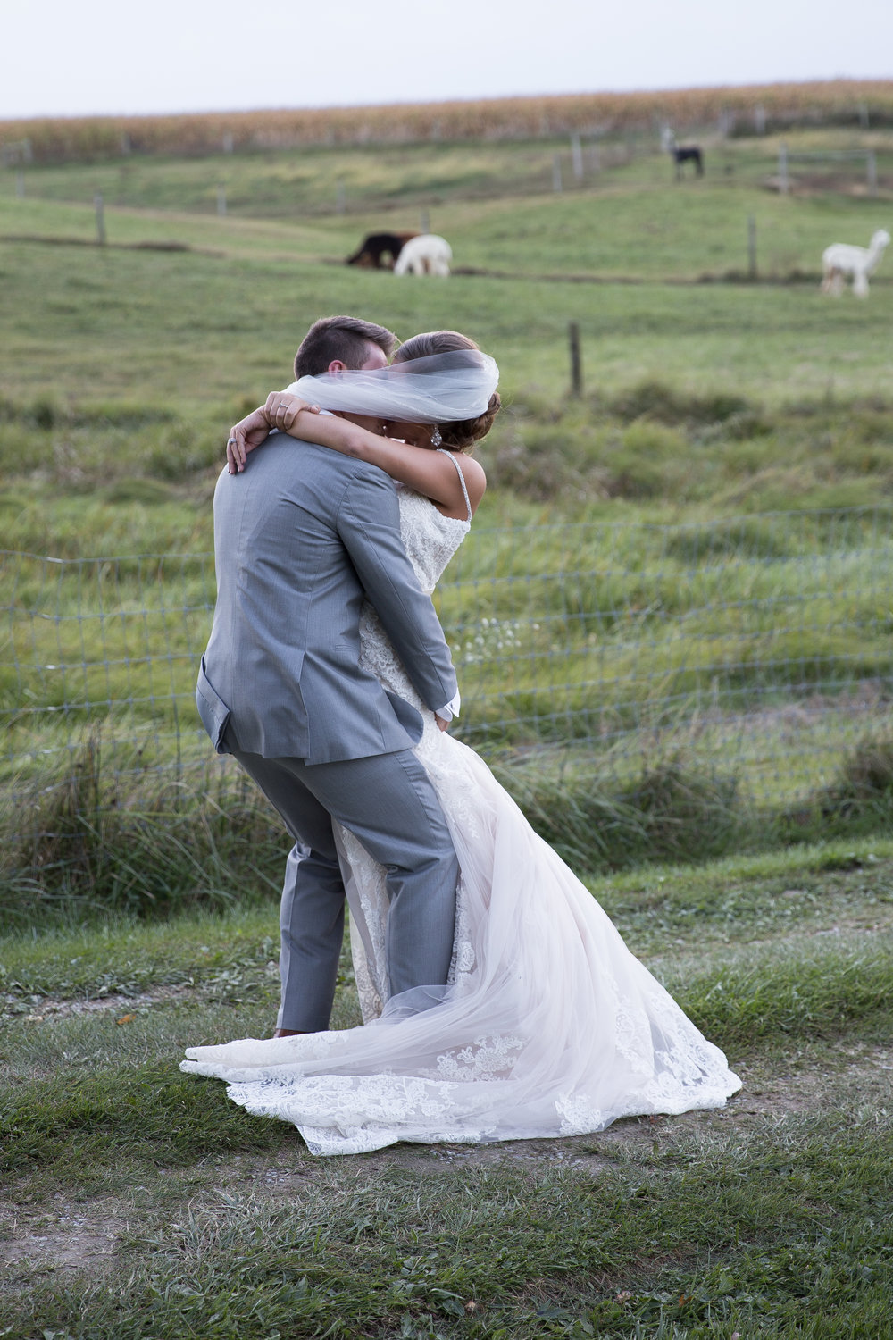 bride and groom kissing on country lane