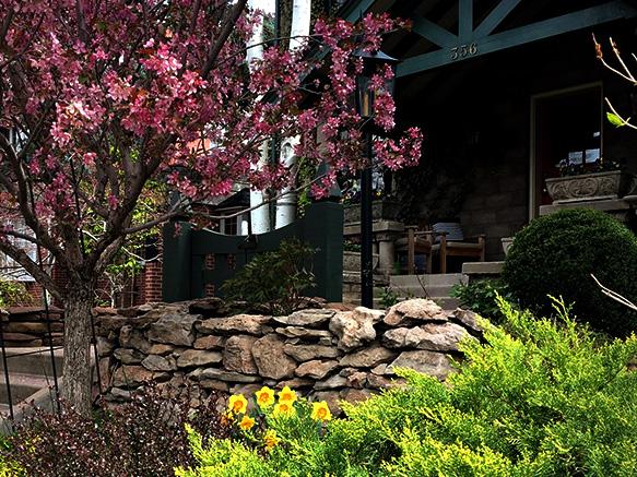 Donovan.Garden.2.jpg