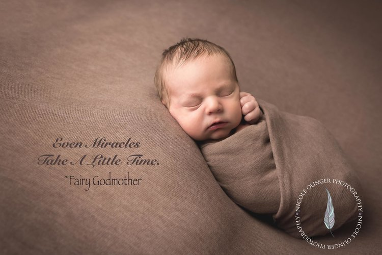 Quad cities newborn photographer jpg
