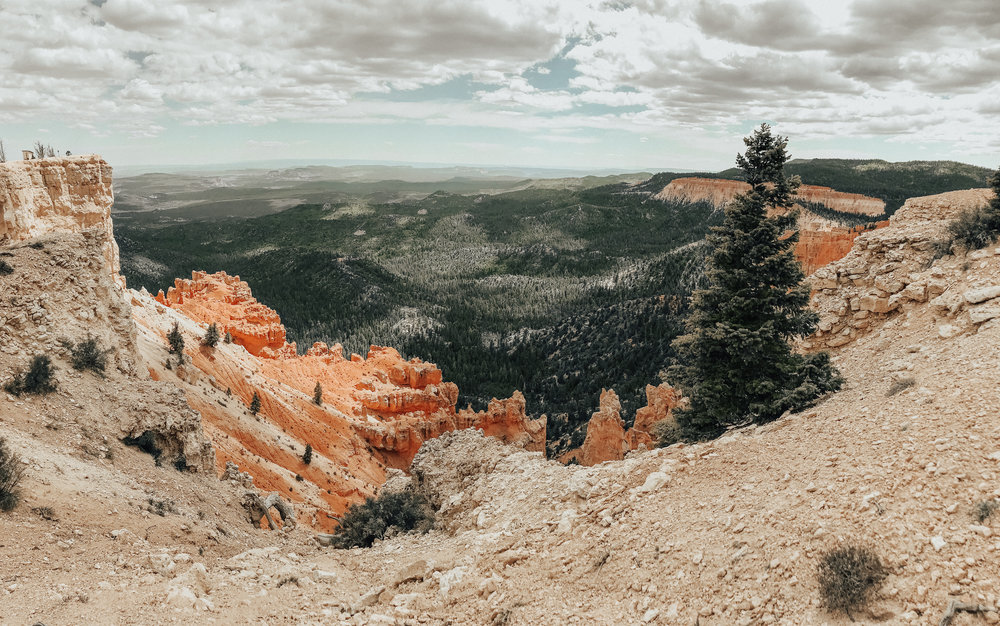 "The geology of Bryce Canyon is so unique! It's filled with spires called ""hoodoos""- which are all the pointy orange rock formations you see in the photos."