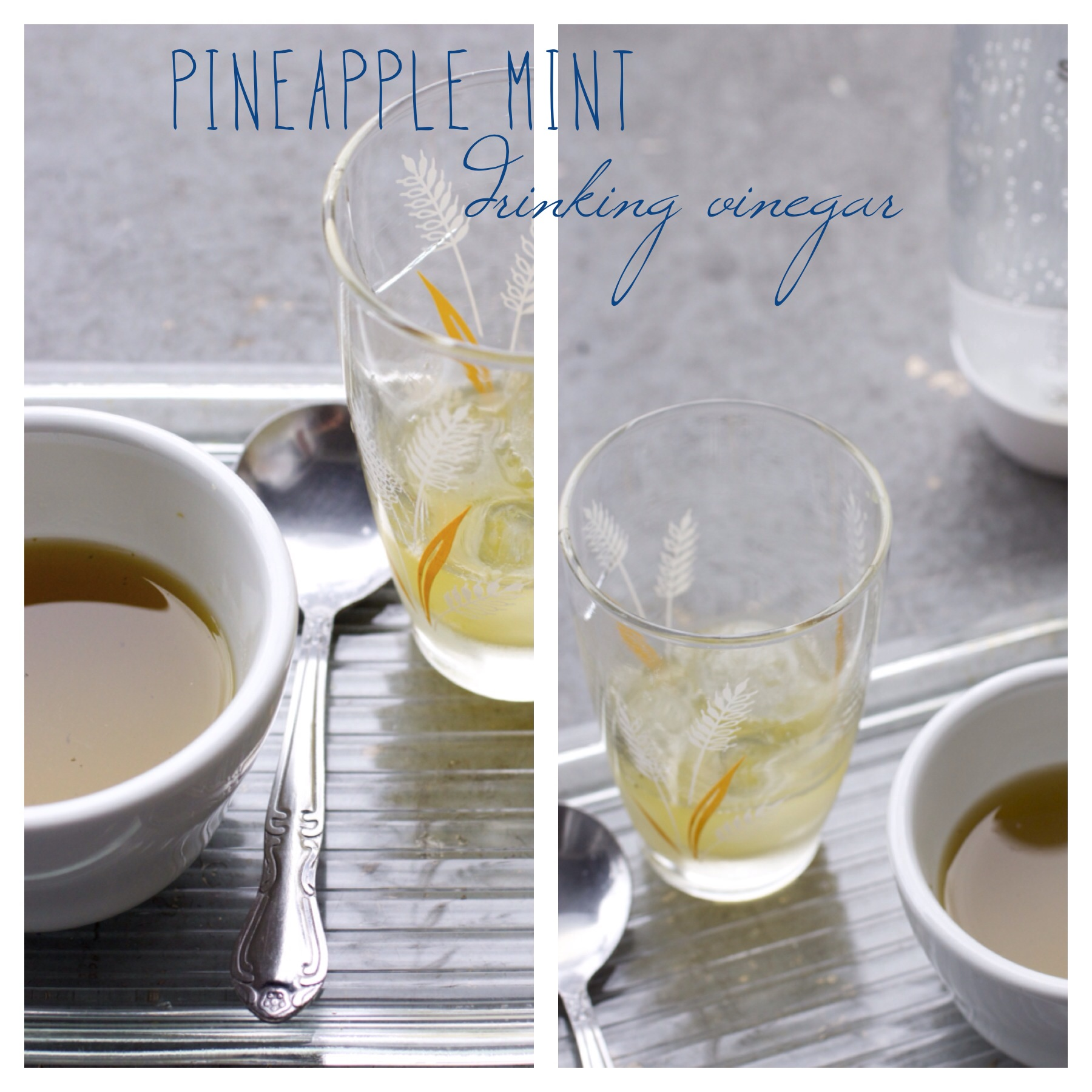 Pineapple Mint Drinking Vinegar