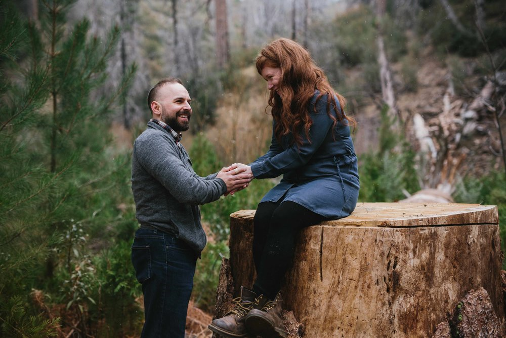 angelescrestforestengagementsession.jpeg