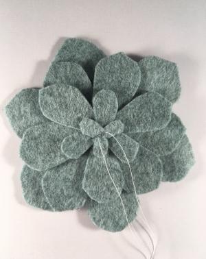 Succulent Sew.jpg