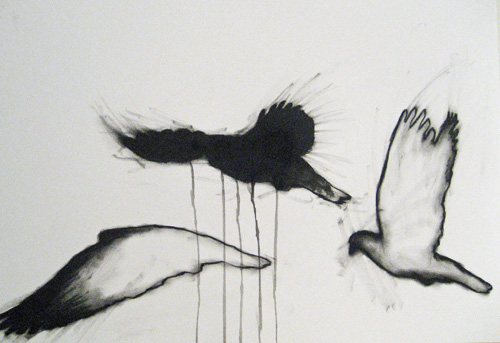 blog pigeon 2