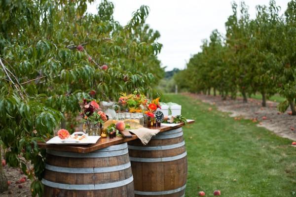 Farm_Wedding_Rhode_Island.jpg