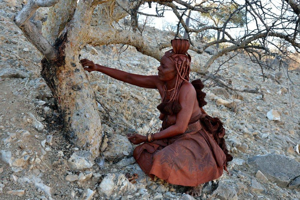 Myrrh Northern Africa.jpg