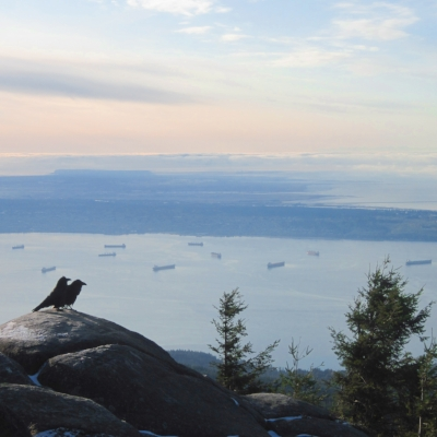 Crows Over Vancouver.jpg