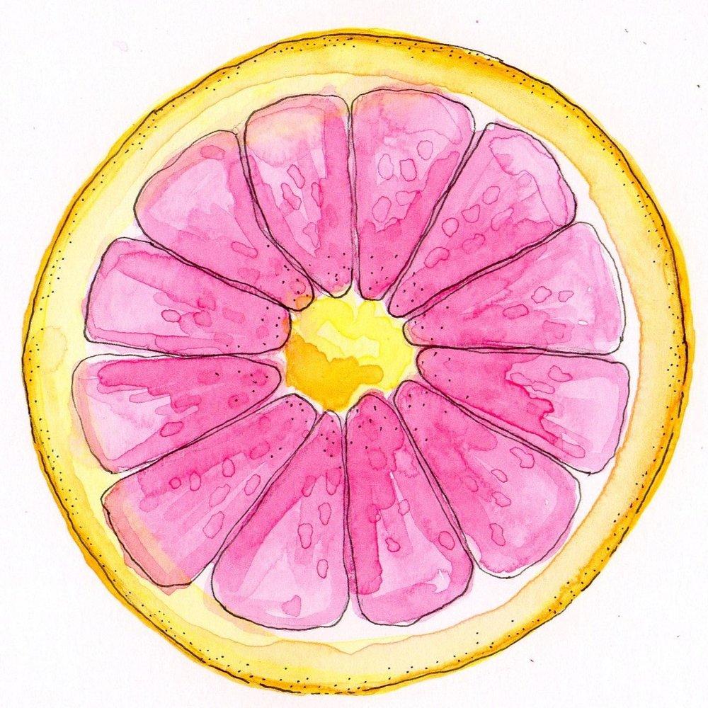 C_JBETHMANN_Grapefruit.jpg